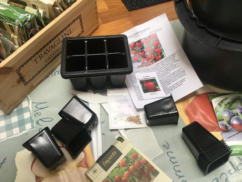Pieniä taimiruukkuja ja tomaatinsiemeniä pöydällä odottamassa kylvämistä.
